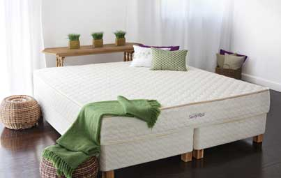 Savvy Rest Natural Latex Mattresses